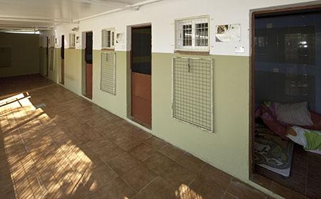 Residencia canina con habitaciones individuales