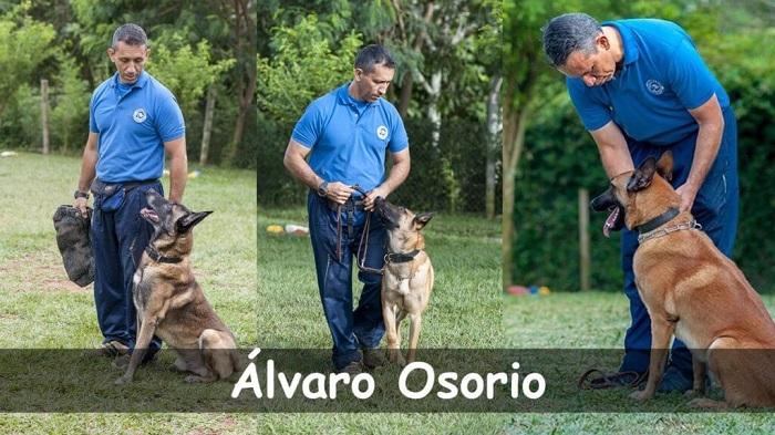 Álvaro Osorio, educador canino
